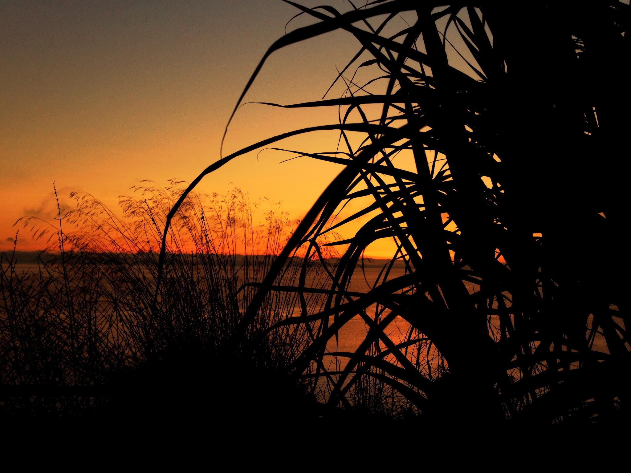 Suquamish Sunrise on Jan. 1, 2013