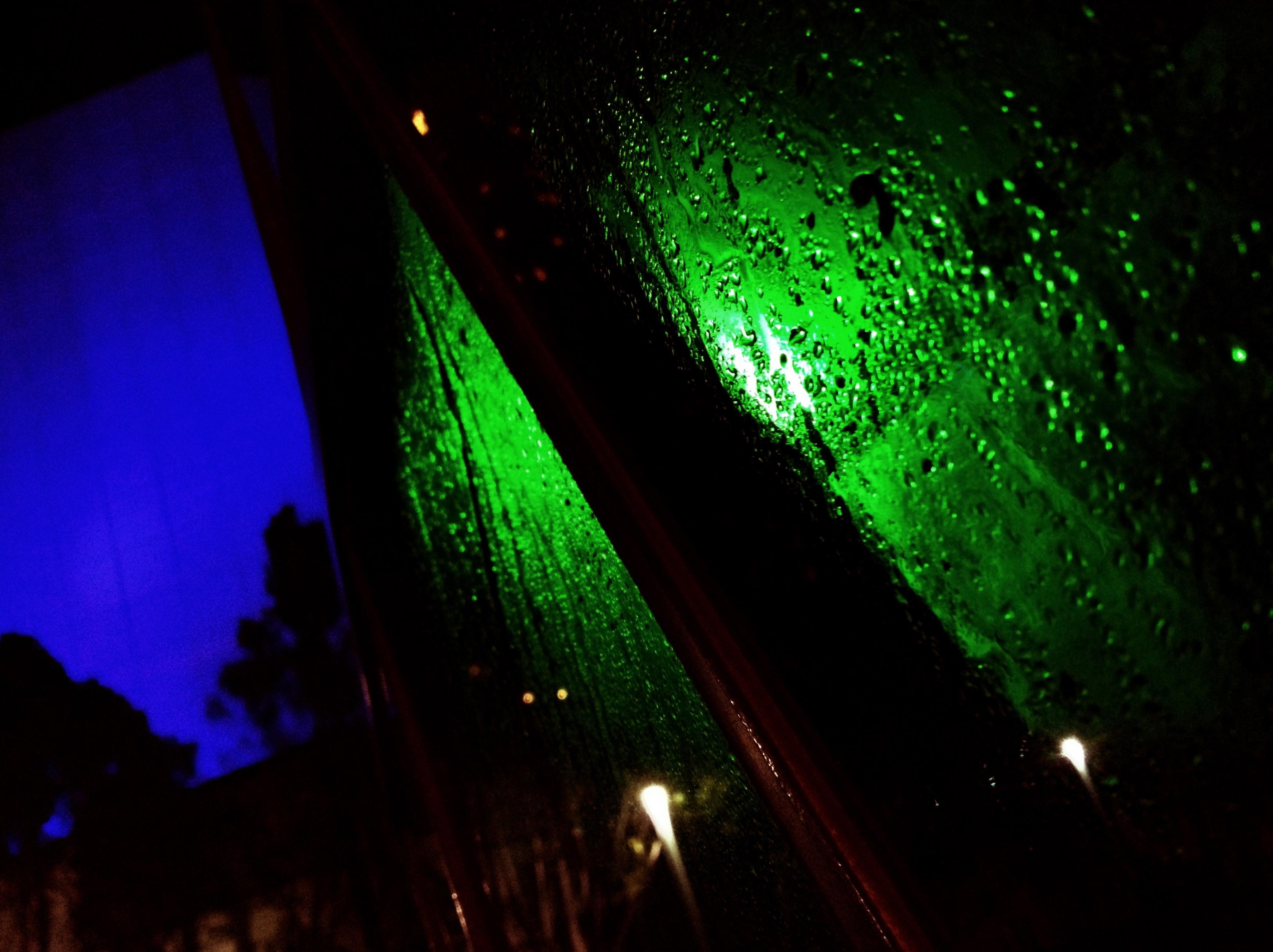 Close-up Seasons HDR