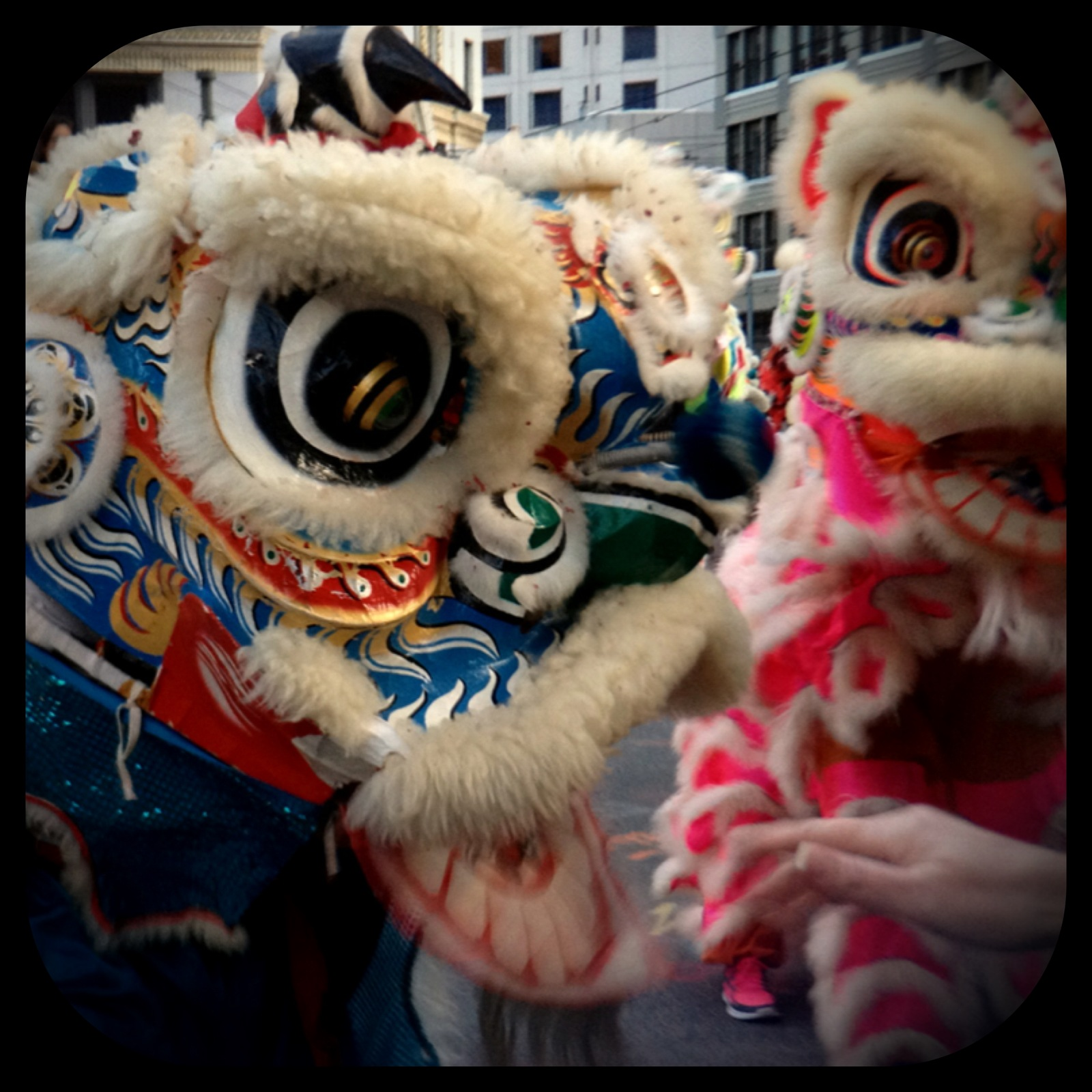 Chinese Lion Dancers - SF Chinese New Year Parade 2013